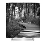 Wooded Walk Shower Curtain