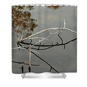Wooden Bridge In Color Shower Curtain