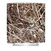 Wooden Butterfly Shower Curtain