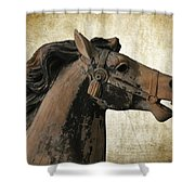 Wooden Carousel Horse Shower Curtain