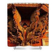 Wooden Elephants Shower Curtain
