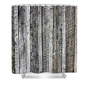 Wooden Fence And Ivy Shower Curtain