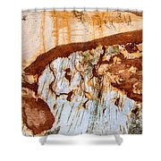 Wooden Landscape - Natural Abstract Structure Shower Curtain