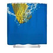 Wooden Paddle Underwater Shower Curtain