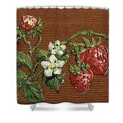 Wooden Strawberries Shower Curtain