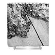 Wooden Wave Shower Curtain