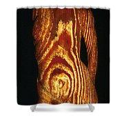 Woodgrain Shower Curtain