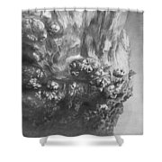 Woodknob  Shower Curtain
