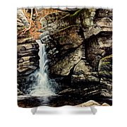 Woodland Falls Shower Curtain