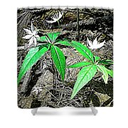 Woodland Flowers Shower Curtain