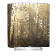 Woodland Glade 2 Shower Curtain