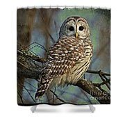 Woodland Goddess Shower Curtain