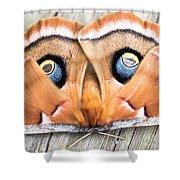 Woodland Moth Shower Curtain