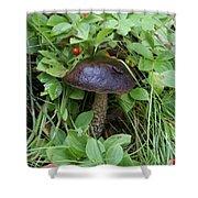 Woodland Mushroom Shower Curtain