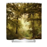 Woodland Passage Shower Curtain
