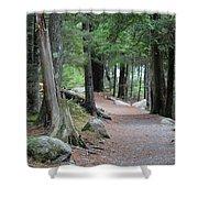 Woodland Path Shower Curtain