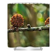 Woodland Pine Cones Shower Curtain