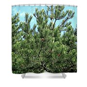 Woodland Pines Shower Curtain
