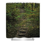 Woodland Steps Shower Curtain