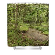 Woodland Strem Shower Curtain