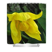 Woodland Tulip Shower Curtain