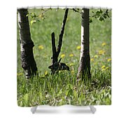 Woodpecker Snack Time Shower Curtain