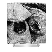 Woodpile Caves Shower Curtain