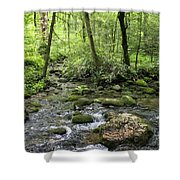 Woods - Creek Shower Curtain
