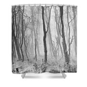 Woods In Mist, Stagshaw Common Shower Curtain