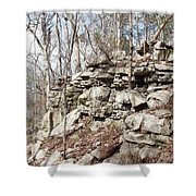 Woods Of Lake Guntersville Shower Curtain