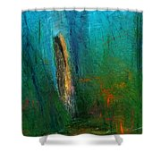Woods Scene 052010 Shower Curtain