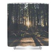 Woods Sunset Shower Curtain