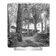 Woods, Troutbeck, Windermere Shower Curtain