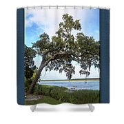 Woodstorks At Oak Grove Island Shower Curtain