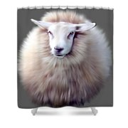 Woolly  Shower Curtain