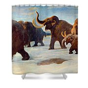 Wooly Mammoths Near The Somme River Shower Curtain