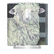 Wooly One Shower Curtain