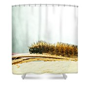 Wooly Worm Shower Curtain