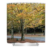 Words End State Park Drive Shower Curtain