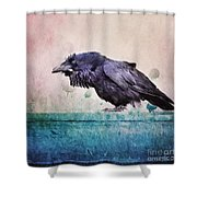 Words Of A Raven Shower Curtain