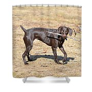 Work And Play Shower Curtain