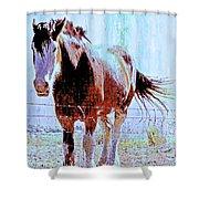 Workhorse Shower Curtain