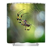 Working The Web Shower Curtain