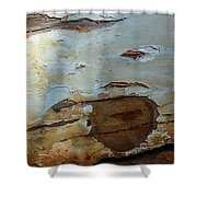 Works Of The Journey I09 Shower Curtain