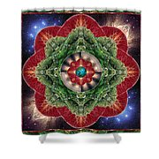 World-healer Shower Curtain