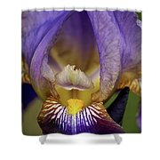 World Inside Of Iris Shower Curtain