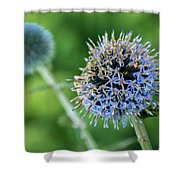 World Of Chaos Shower Curtain