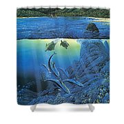 Worlds Away Ted Nasmith Shower Curtain