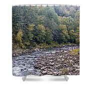 Worlds End State Park Loyalsock Creek Shower Curtain