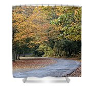 Worlds Ends State Park Road Shower Curtain